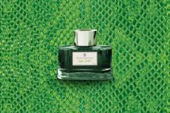 GvFC Tinte viper green