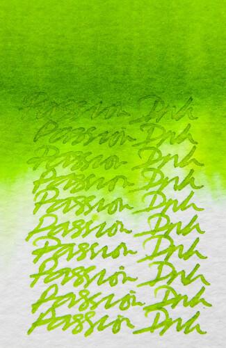 Diamine Tinte calligraphy passion